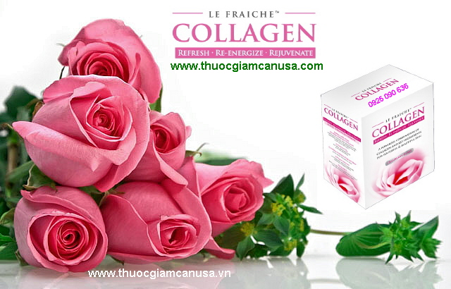 Le-Fraiche-Collagen-1