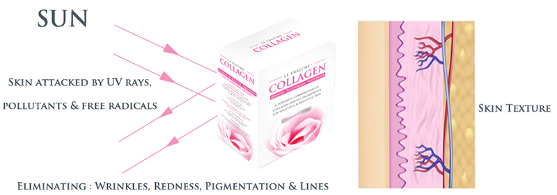 le-fraiche-collagen-5