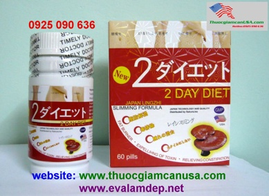 2 day diet usa